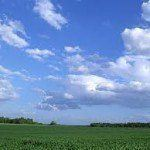 Investment funds around the world seeking farmland in response to food price hikes
