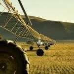 Argentina busca triplicar la cantidad de tierra cultivable bajo riego
