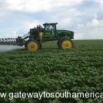 Irrigated Farming in Bahia Brazil leading the way to Sustainable Farming