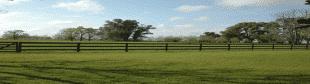 Argentina Farmland Prices continue to Fall